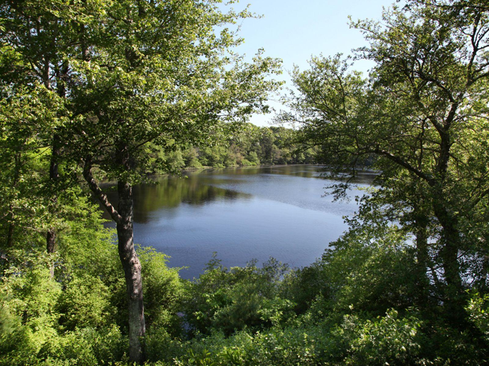 Sensational Osterville Pondfront