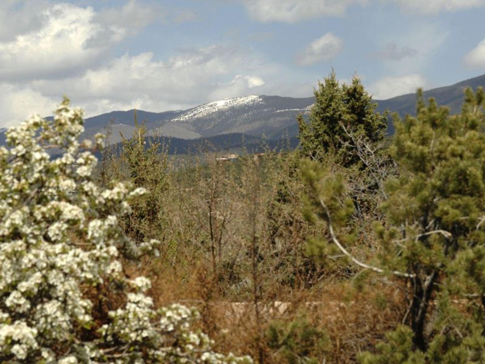 587 Camino Del Monte Sol