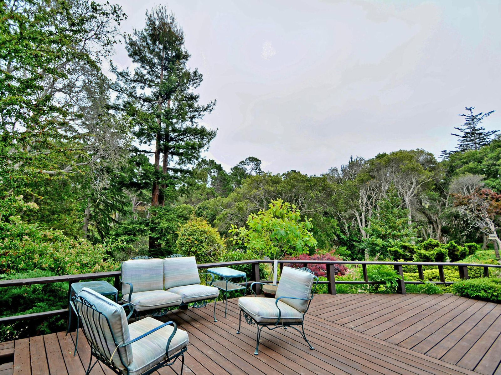 Beautiful Gardens in Monterey