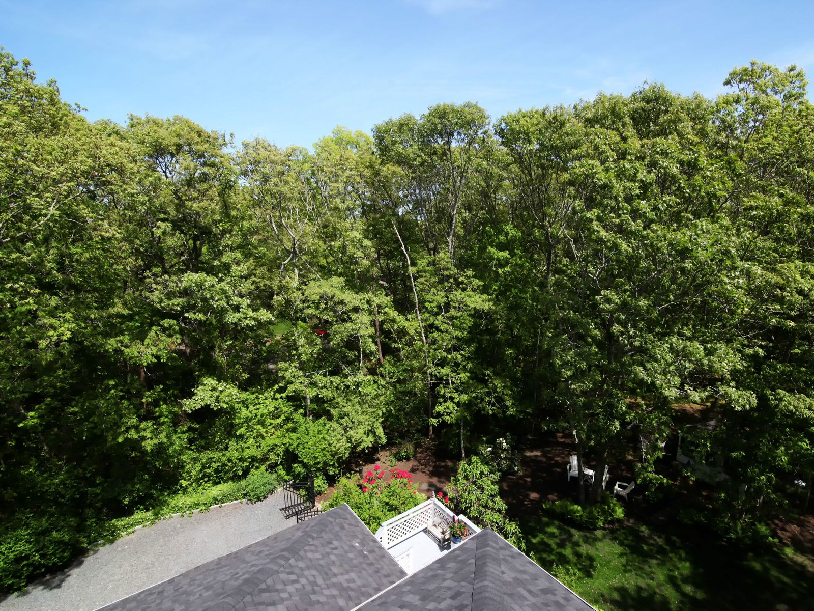 Pristine Hip Roof Colonial Near Beaches