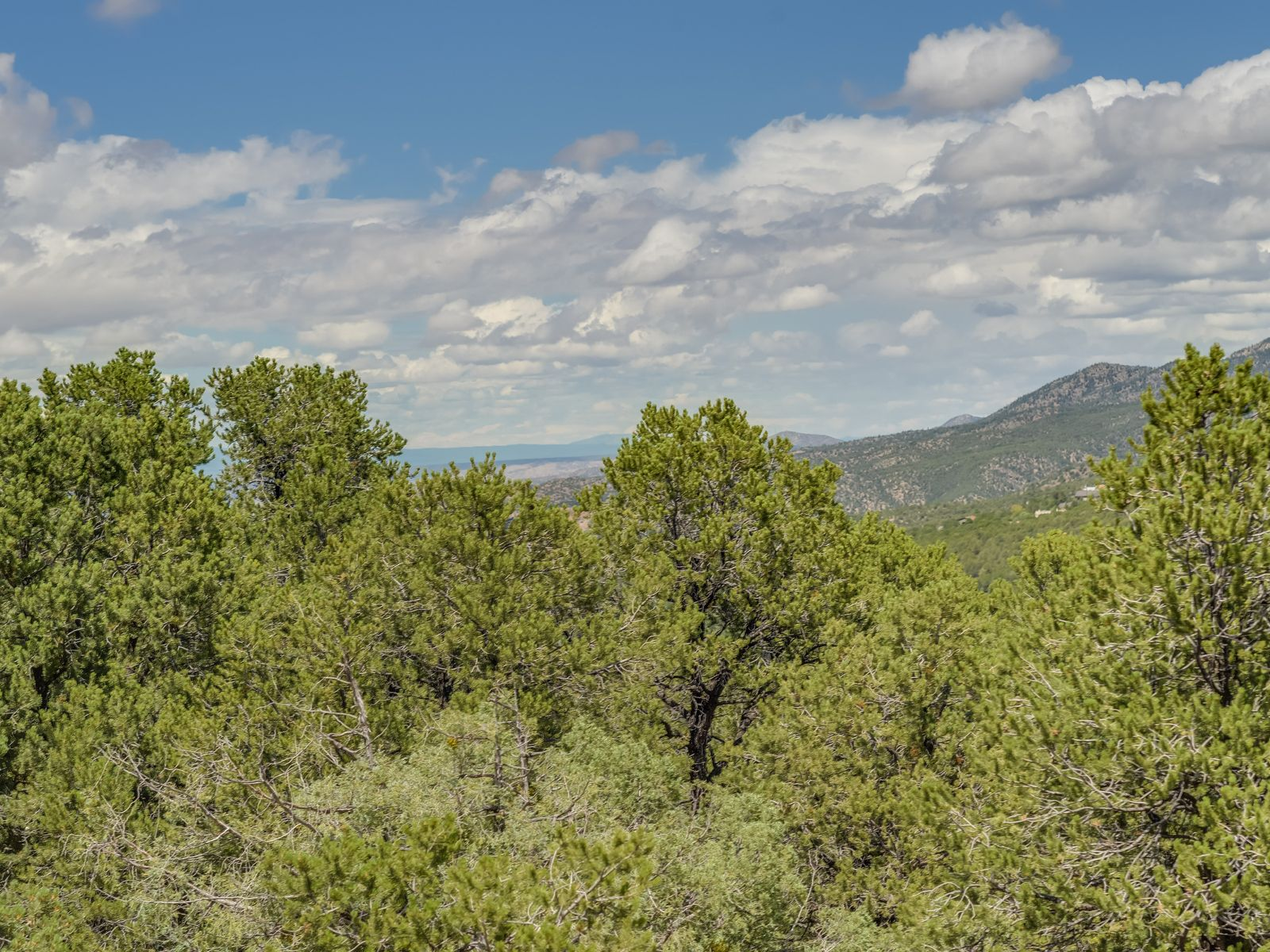 View-Filled High Summit Homesite