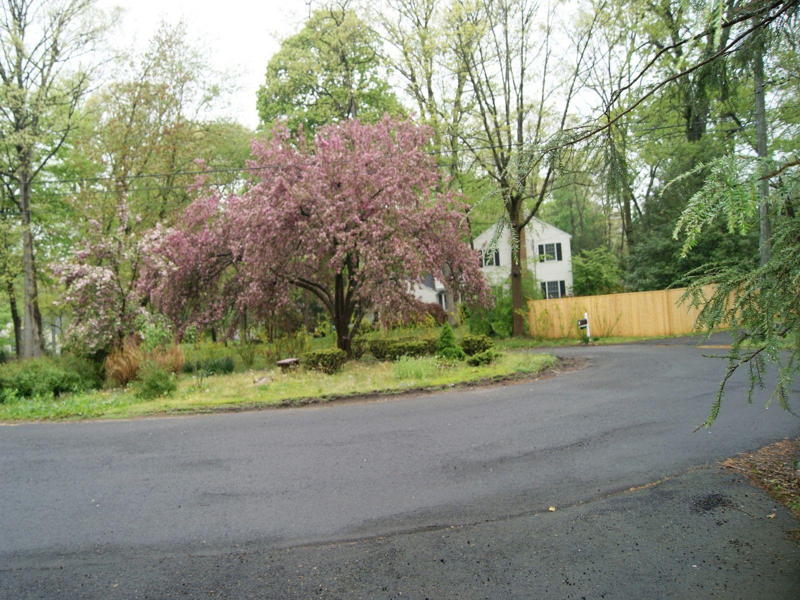 Estate Neighborhood