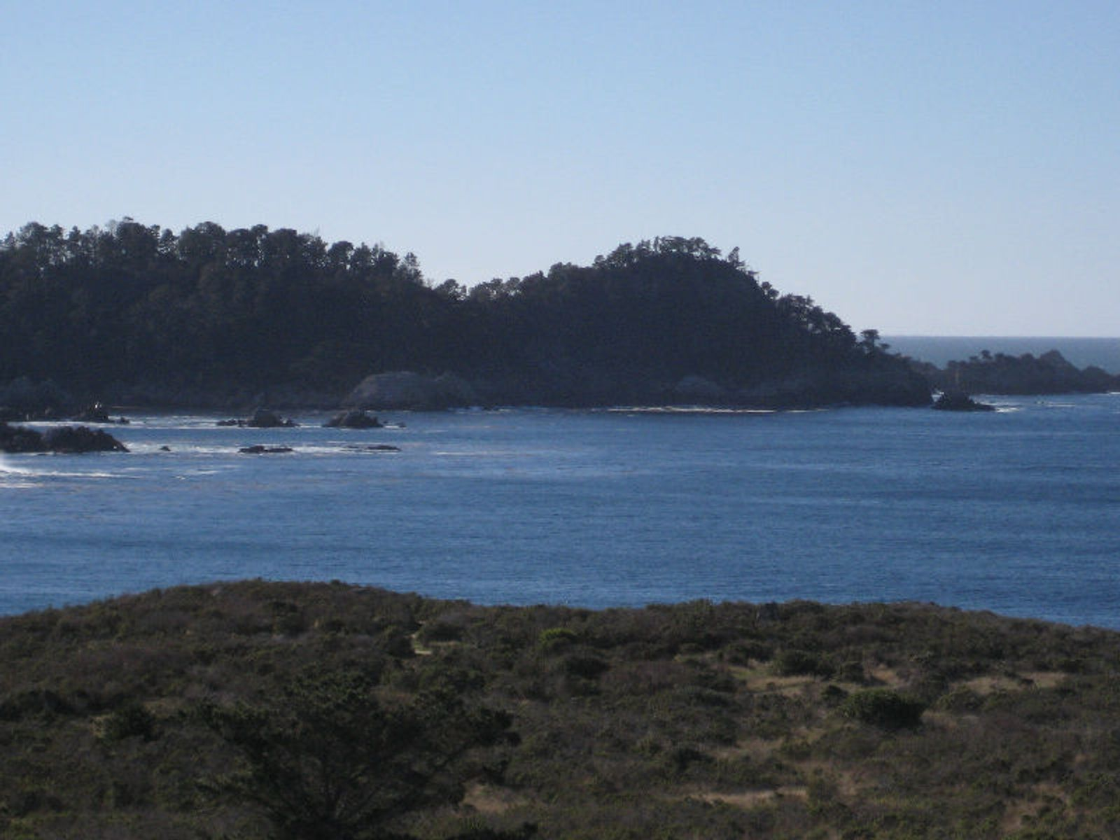 Spectacular Point Lobos Views
