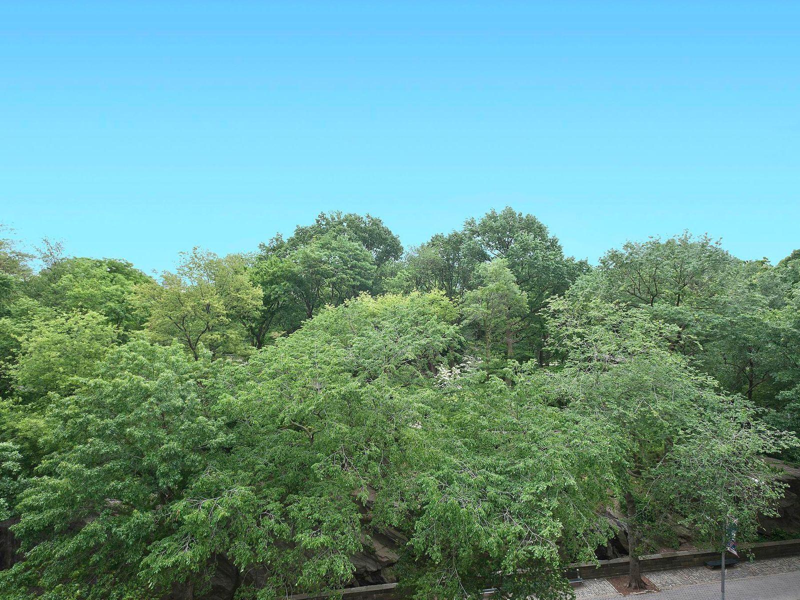 227 Central Park West