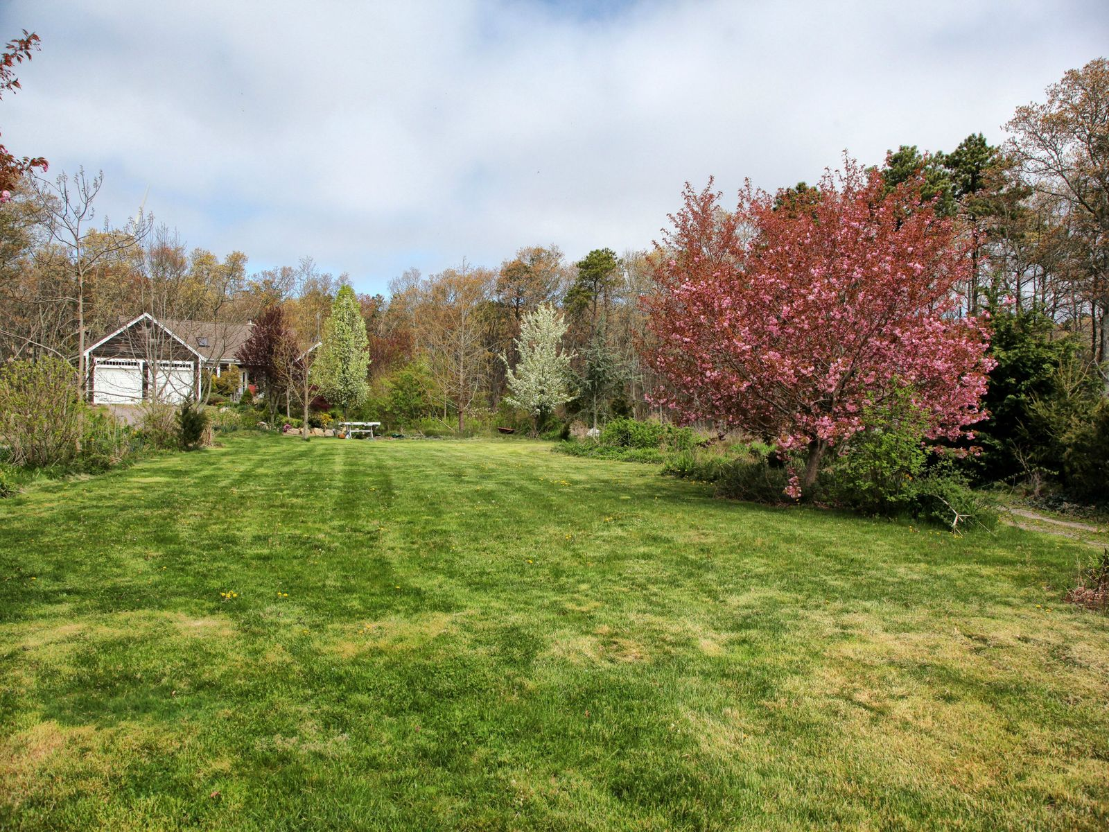 Ranch on 3 Private Acres
