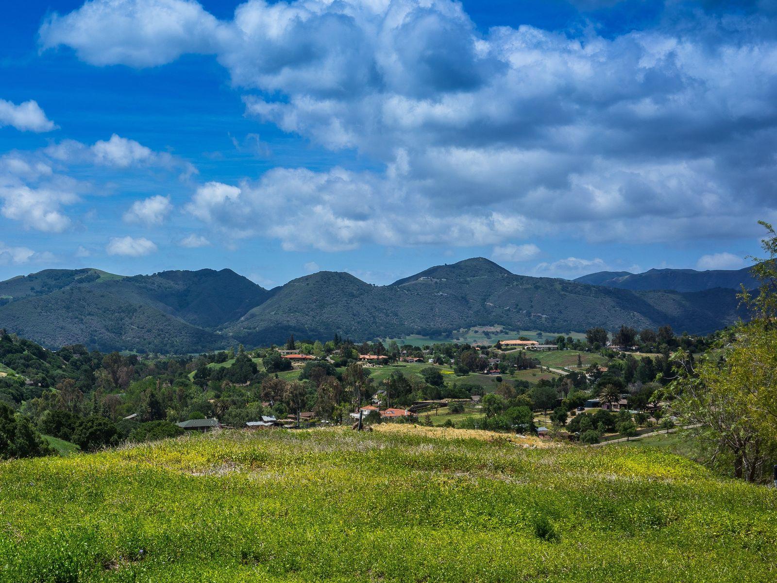 Regency Hills Estate