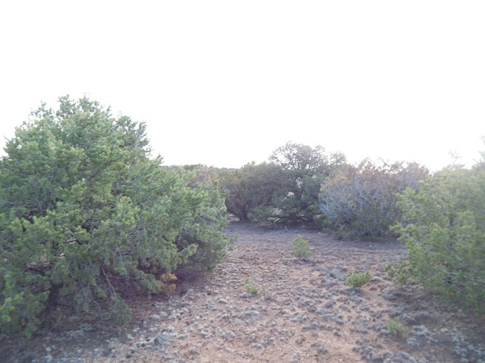 24 Calle San Acacia, Santa Fe NM Acreage / Lots - Santa Fe Real Estate