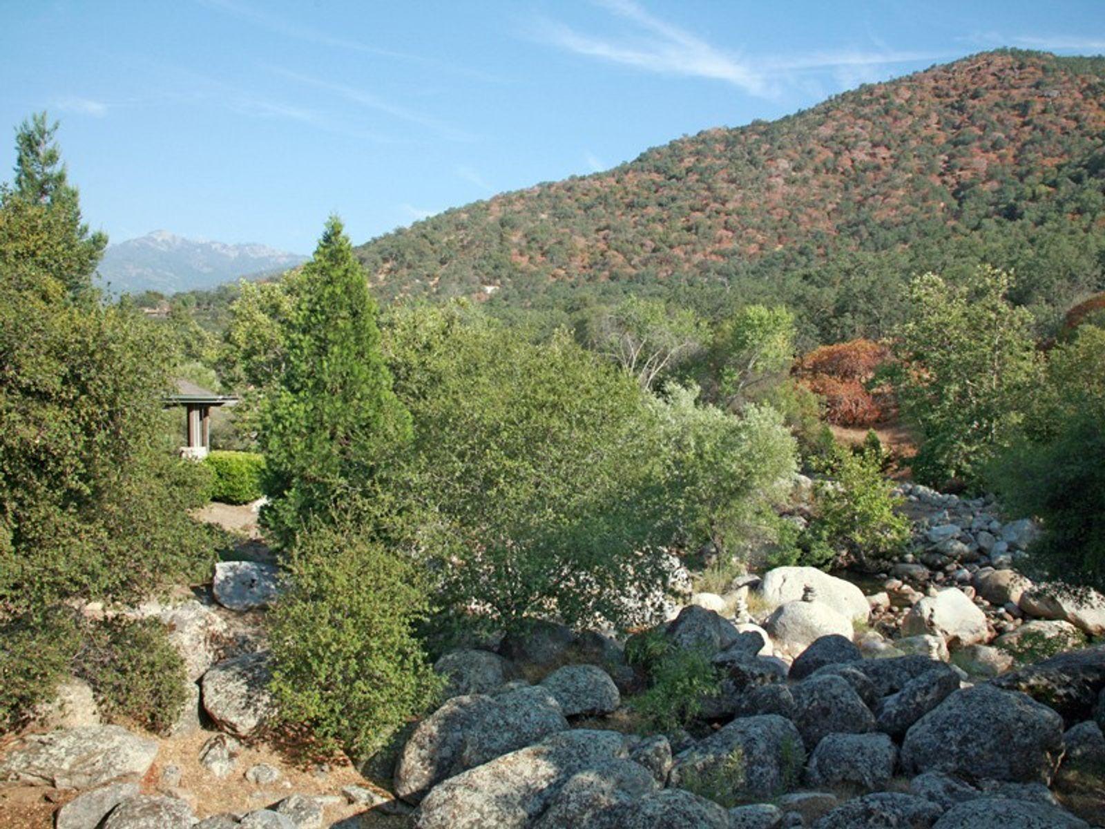Enchanting Sequoia-Three Rivers