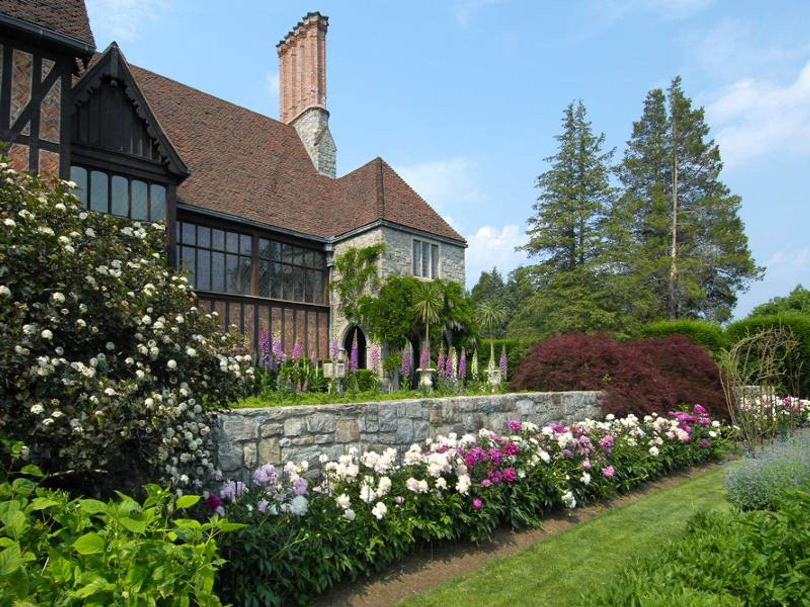 Peonies Gardens