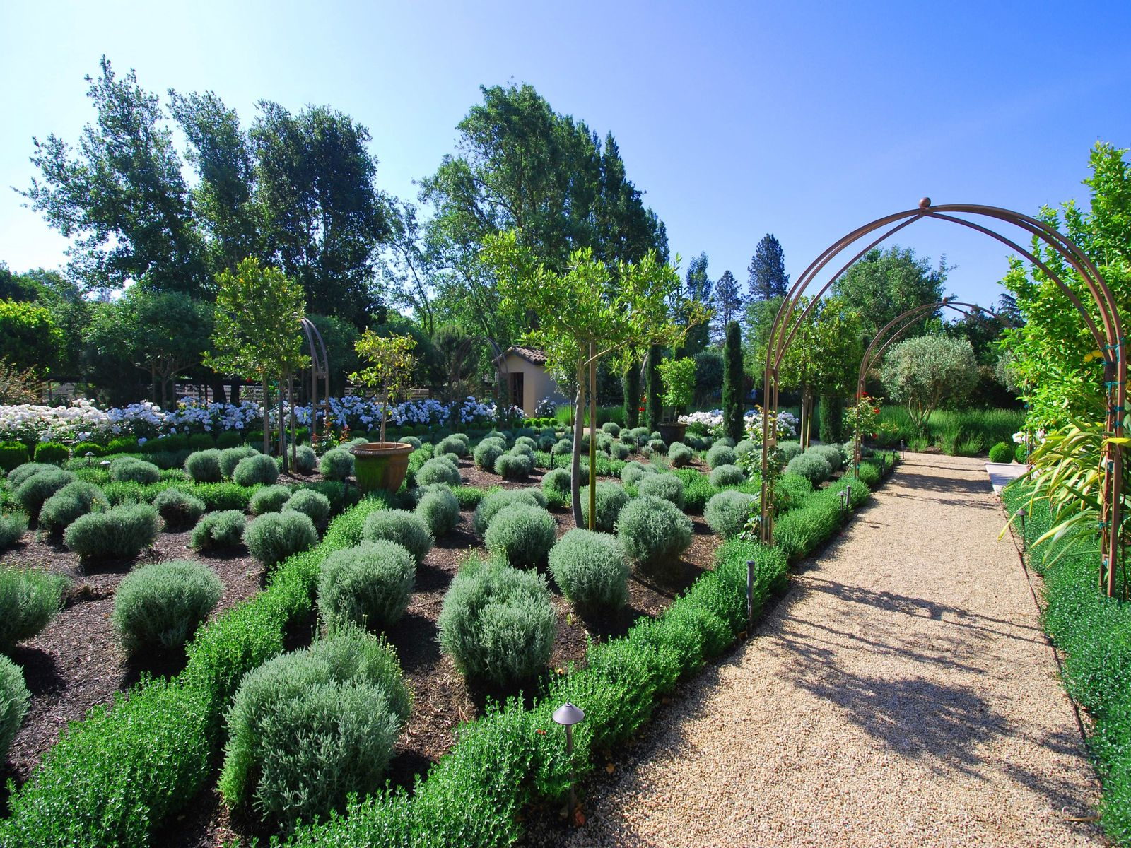 Beautifully sculpted lavender and rose gardens