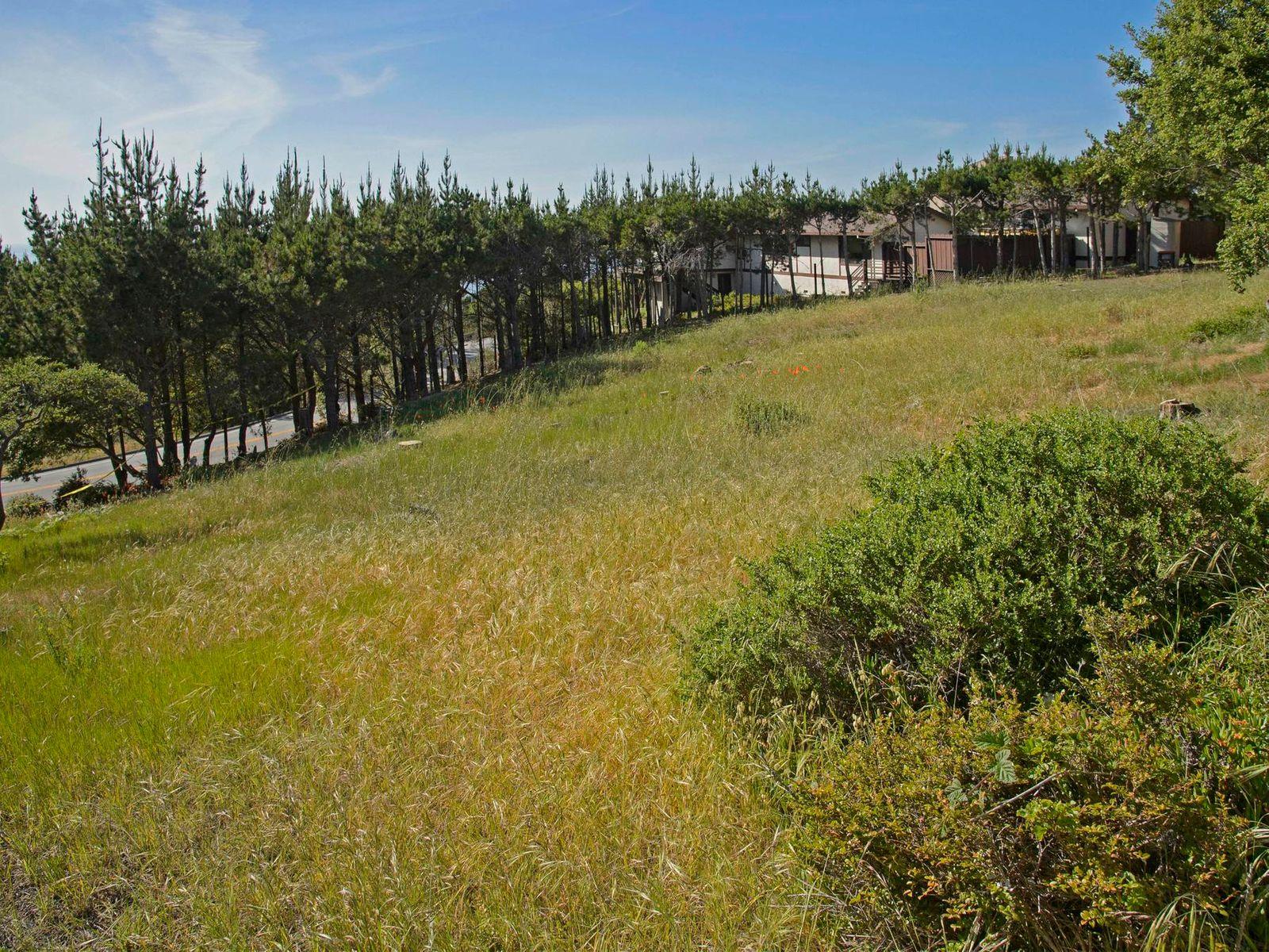 Sensational Pebble Beach Lot with Plans