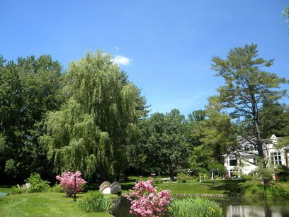 Enchanted 5-Acre Estate, Greenwich CT Single Family Home - Greenwich Real Estate
