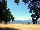 SESSATIONAL+Carmel+Valley+Lot+in+the+Sun
