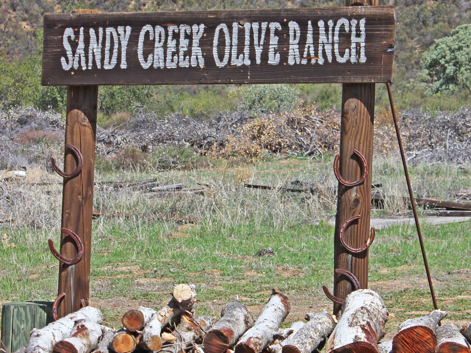 Sandy Creek Olive Ranch