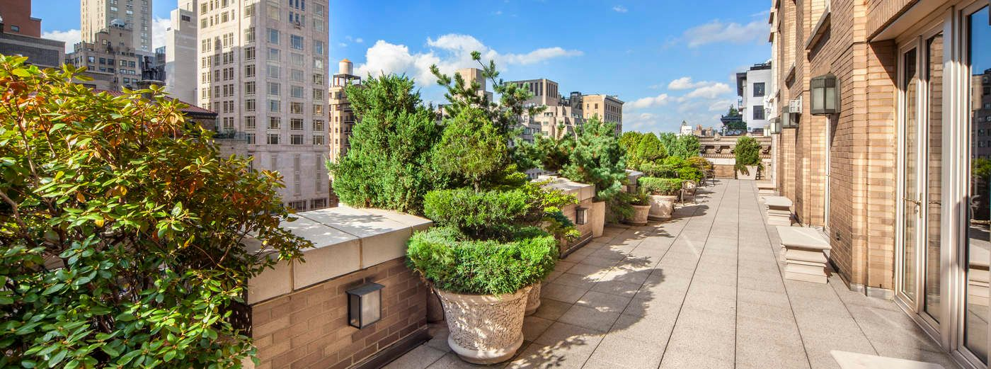 Spectacular Terraces on Park Avenue