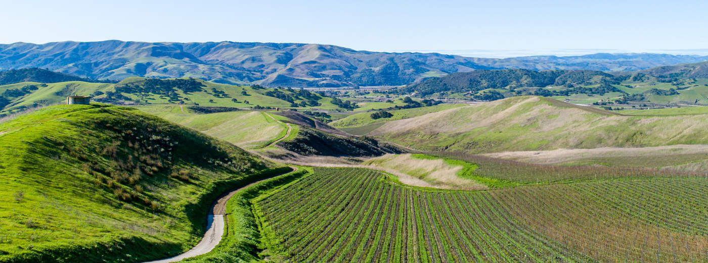 1000+/- Acres In The Santa Rita Hills